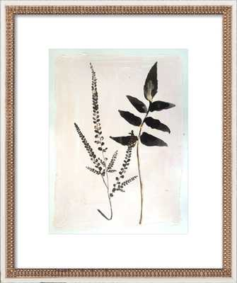 "Fern Wall Art / 20""x24"" - Artfully Walls"