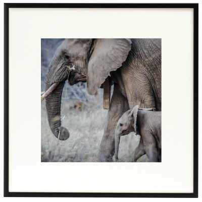 Lyerly Aluminum Square Picture Frame - Wayfair