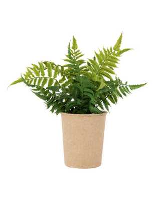 FAUX PAPER POT FERN - McGee & Co.