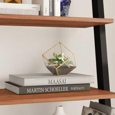 Gorton Glass Terrarium - Wayfair