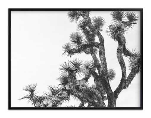 "joshua tree in september, 40""x30"", Rich Black Wood Frame - Minted"