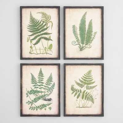Fern Wall Art Set of 4: Green - Wood  by World Market - World Market/Cost Plus