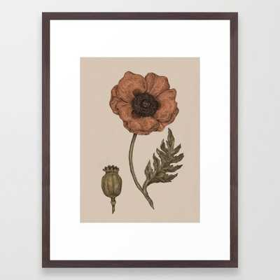 Poppy - Conservation Walnut - Society6