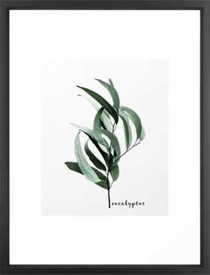 Eucalyptus - Australian gum tree Framed Art Print - Vector black 20x26 - Society6