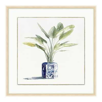 "Chinoiserie Plant Art  II--20"" x 20"" - Ballard Designs - Ballard Designs"