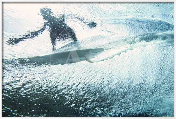 Underwater View of a Surfer on the Water's Surface - art.com