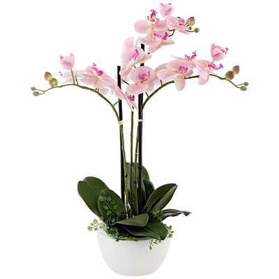 """Real Touch Pink Orchid 22"""" High Faux Flowers in White Pot - Lamps Plus"""