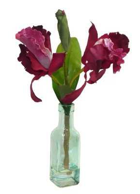 Cattleya Orchid Floral Arrangement in Decorative Vase - Wayfair