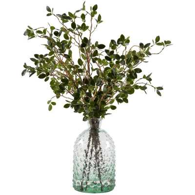 Bonsai Ficus Branches Floral Arrangement - Wayfair