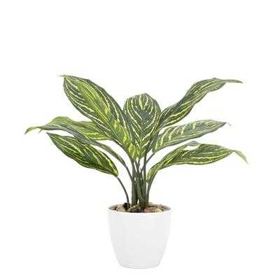 "Villa 4.5"" Diameter Faux Potted 12"" Plant in Stripe Calathea design by Torre & Tagus - Burke Decor"