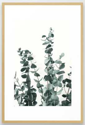 "Eucalyptus Leaves Framed Art Print - Conservation Natural 26"" X 38"" - Society6"