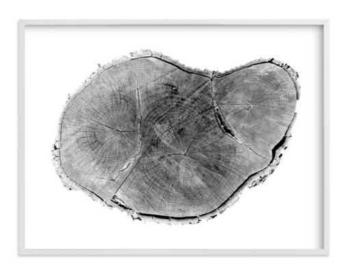 Tree Rings pt. 1 Wall Art - 40x30 - Minted