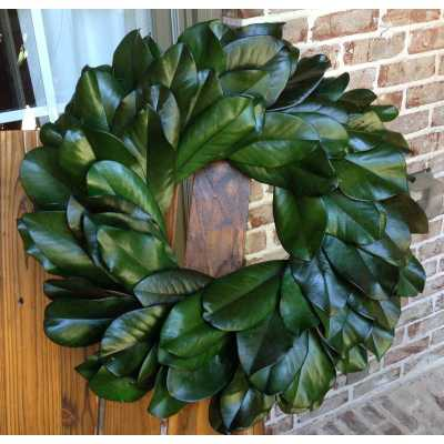 "Preserved Magnolia 20"" Wreath - Birch Lane"