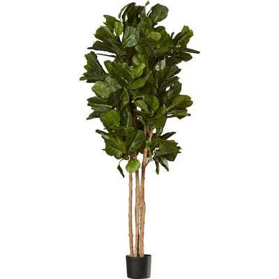 Leaf Floor Foliage Tree in Pot - Wayfair