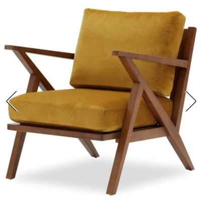 Velvet Mid-Century Accent Chair by Drew Barrymore Flower Home - Hayneedle