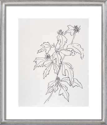 Leaves Rose of Sharon - Artfully Walls