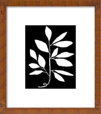Branch - Artfully Walls