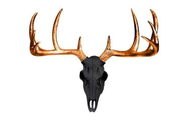 Mini Deer Head Skull Wall Décor - Wayfair