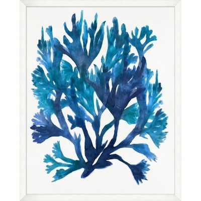 """Customizable Indigo Coral 1 - 26"""" x 32"""" - White Frame - Williams Sonoma"""