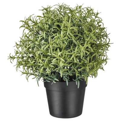 """FEJKA Artificial potted plant, Rosemary, 3 ½ """" - Ikea"""