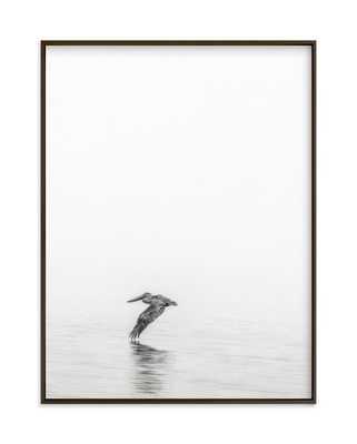 pelican on lake - Minted