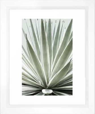 Tropical Century Plant Photography Framed Art Print - Society6