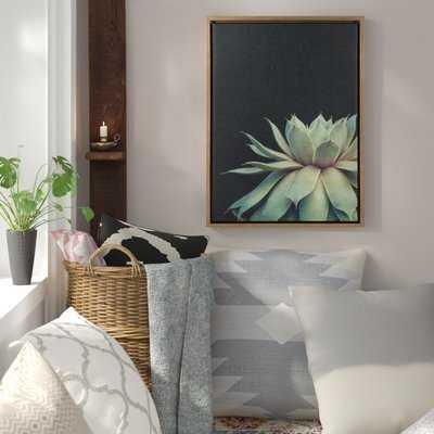 'Sylvie Succulent' Framed Photographic Print on Canvas - Wayfair