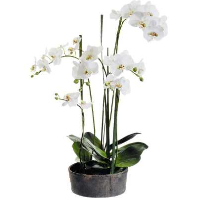 Faux Phalaenopsis Orchids with Clay Pot - Wayfair