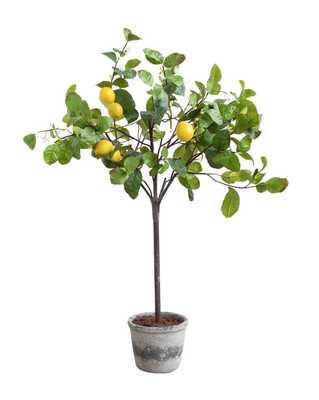 FAUX POTTED LEMON TREE - McGee & Co.