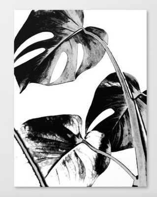 Black monstera leaves watercolor Canvas Print - Society6