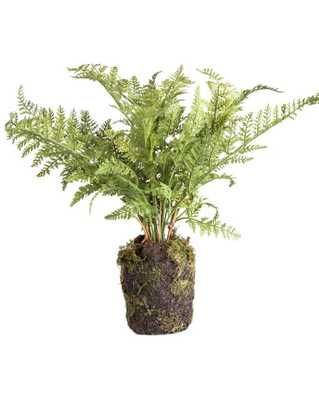 "FAUX FERN DROP-IN - 10.5"" - McGee & Co."