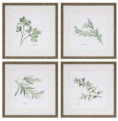 Herbs by Paschke - 4 Piece Picture Frame Graphic Art Print Set on Paper - Birch Lane
