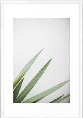 """Plant Framed Art Print - Medium (gallery) - 20""""x26"""" - Vector White frame - Society6"""