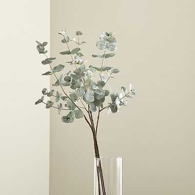 Faux Eucalyptus Bunch - Crate and Barrel