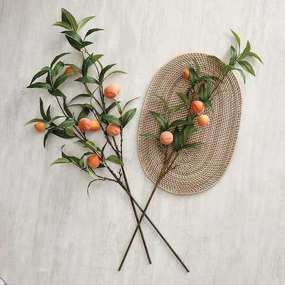 Set of 3 Peach Stems    - Ballard Designs - Ballard Designs