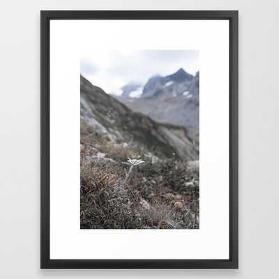 Edelweiss Framed Art Print - Society6