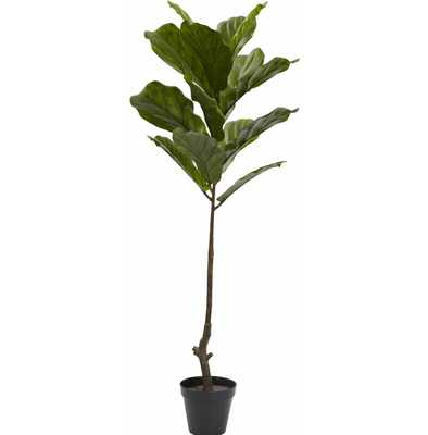 Foliage Tree in Pot - AllModern
