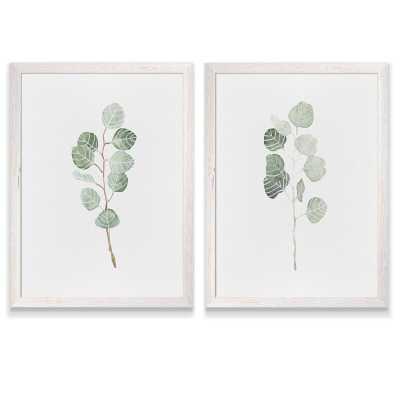 """24"""" H x 18"""" W x 1.25"""" D 'Soft Eucalyptus Branch I' by Vincent Van Gogh - 2 Piece Picture Frame Painting Print Set - Wayfair"""