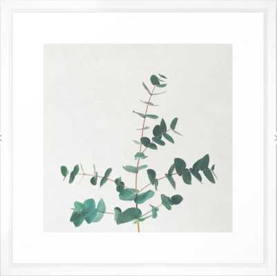 """Eucalyptus Framed Art Print, 22"""" X 22"""", Vector White Frame - Society6"""