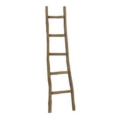 5 ft Blanket Ladder - Birch Lane