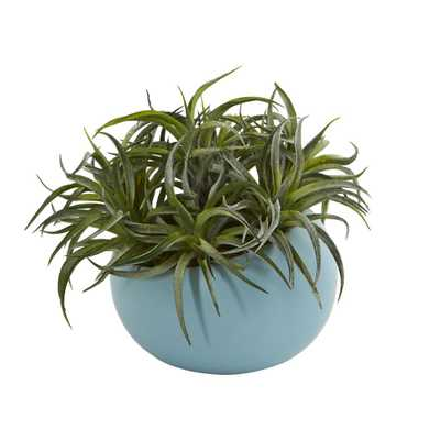 "9"" Succulent Artificial Plant in Blue Planter - Fiddle + Bloom"