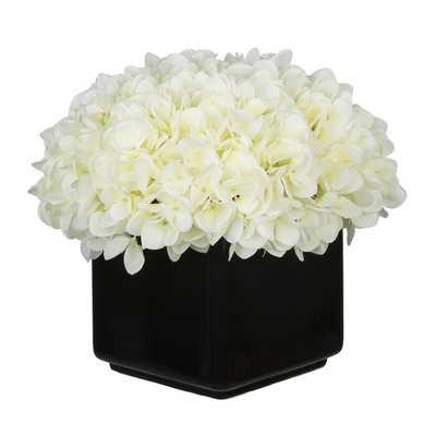 Hydrangea Arrangement in Large Black Cube Ceramic  Hydrangea Arrangement in Large Black Cube Ceramic  Hydrangea Arrangement in Large Black Cube Ceramic Hydrangea Arrangement in Large Black Cube Ceramic - Wayfair