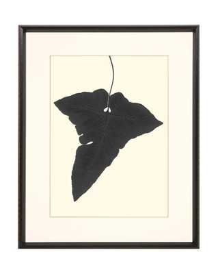 LEAF SILHOUETTE 4 Framed Art - McGee & Co.