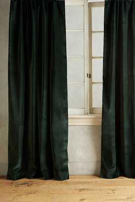 """Matte Velvet Curtain-forest/ 84"""" X 50'' - Anthropologie"""