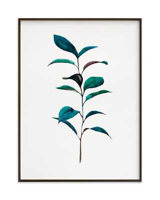 Ruscus Art Print // 18x24 // Matte Black Frame // No Matte // Standard Border - Minted