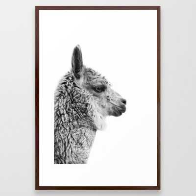 Llama Drama | Alpaca Animal Photography Framed Art Print - Society6