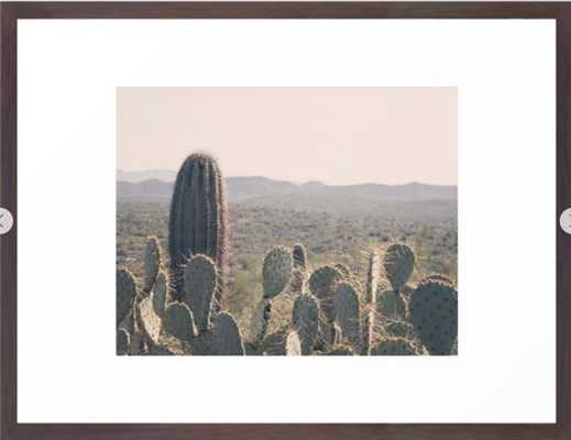 Arizona Cacti Framed Art Print 141 by Gaea Photography- 20x26- Vector Black Frame - Society6