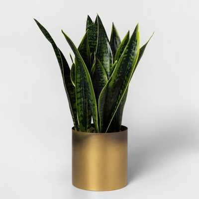 Faux Sansevieria Plant in Gold Pot - Project 62™ - Target