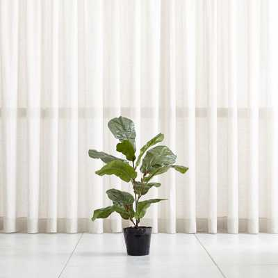 Faux 3.5' Fiddle Leaf Fig Tree - Crate and Barrel