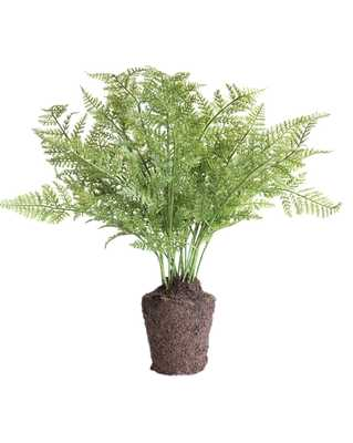 "FAUX FERN DROP-IN - 13"" - McGee & Co."